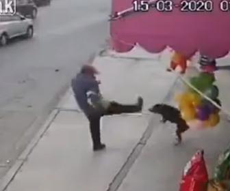 【衝撃】犬に吠えられた男性。犬を蹴り飛ばそうとするが…