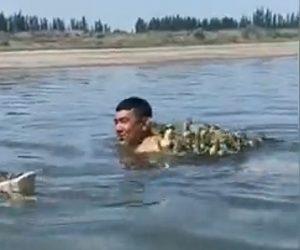 【動物】川を泳ぐ男性の背中にアヒル達が乗ろうとする衝撃映像