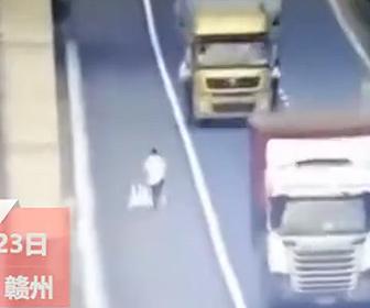 【動物】高速道路に迷い込んだアヒルを男性が必死に捕まえて助け出す衝撃映像