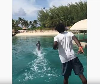 【動物】男性が投げたアメフトのボールをイルカがバックで泳ぎ見事キャッチする衝撃映像