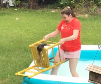 【動物】女性がビニールプールから出れないリスを助けようとするが…衝撃映像