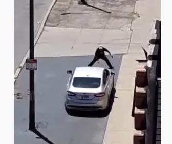 【衝撃】男が道を走る車に石を投げ、怒ったドライバーは車をUターンし…