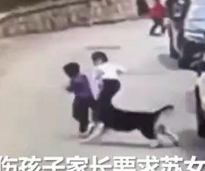 【動物】シベリアン・ハスキーが道で遊ぶ子供達に襲いかかる衝撃映像