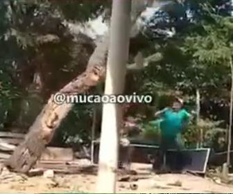 【衝撃】大きな木をロープで引っ張り倒そうとするが木がロープを引く男性に倒れ…