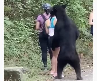【動物】山道を歩く女性達にクマが迫ってくる衝撃映像