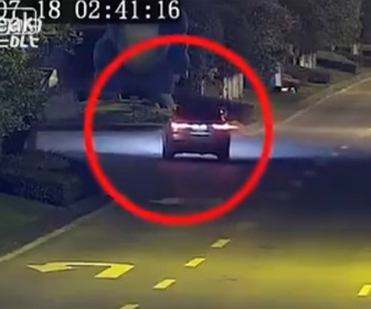 【衝撃】飲酒運転の車が恐竜に突っ込んで行く衝撃映像