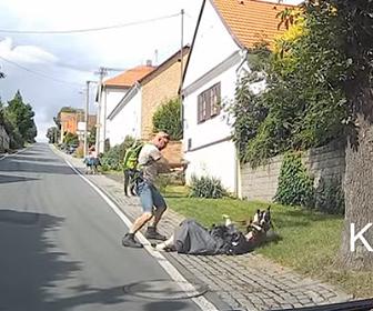【動物】道を歩く母親と男性に突然犬が襲いかかり、男性が銃を撃ち犬を撃退する衝撃映像