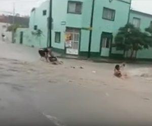 【洪水】洪水で道に濁流が押し寄せ、人やタクシーが流される衝撃映像