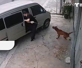 【衝撃】犬泥棒が犬を一瞬で盗む早業が凄い