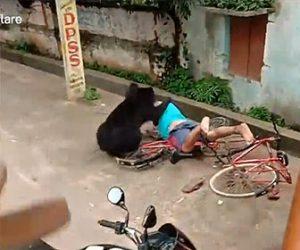 【動物】住宅地に侵入してきた野生のクマが男性に襲いかかる衝撃映像