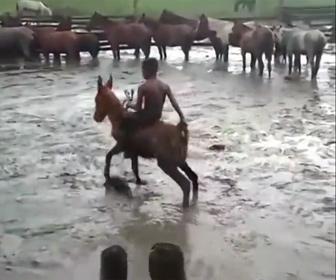【衝撃】少年が裸馬を乗りこなそうとするが…