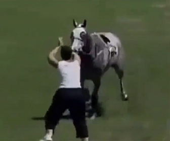 【動物】暴走する競走馬を女性が身を挺して止めようとするが…