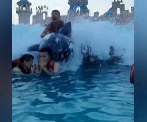 【衝撃】波のプールでクジラに乗った男性が猛スピードで突っ込んでくる衝撃映像