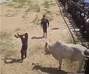【闘牛】男性が逆立ちしながら暴れ牛に近づき牛が突進してくるが…