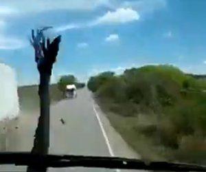 【事故】対向車の大型トラックがはね上げた木がフロントガラスに飛び込んでくる衝撃映像