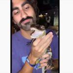 【動物】赤ちゃんワニにキスをする男性に悲劇が…