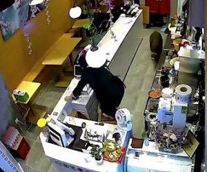 【衝撃】ミルクティー店にイノシシが侵入し女性店員が必死に逃げる衝撃映像
