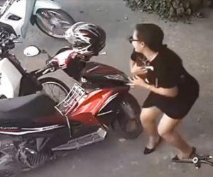 【衝撃】女がスカートの中に子猫を入れて盗む衝撃映像