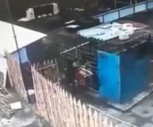 【動物】動物保護施設でクマが女性に襲いかかる衝撃映像