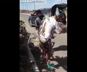 【衝撃】コントロールを失いサボテンに突っ込んだサイクリストがヤバすぎる!