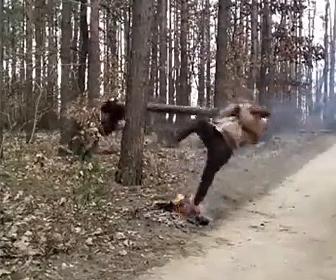 【面白】男性2人が長い丸太を折ろうとして丸太の端を持って木にぶつかるが…