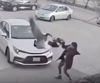 【動物】 女性に襲いかかるガチョウ。女性は車に乗り込むが…