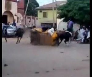 【衝撃】南スーダンのストリート競馬が危険すぎる