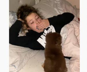 【サプライズ】寝ている9歳の娘に欲しがっていた子犬をプレゼントするハッピーサプライズ