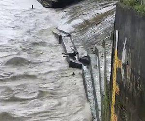【衝撃】流れの速い川で溺れている子牛を男性が命がけで助ける衝撃映像
