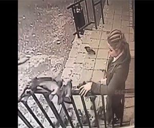 【衝撃】少女が餌を食べているハトを捕まえて持ち帰る衝撃映像