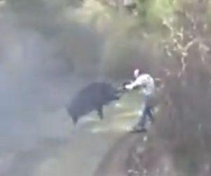 【動物】ライフルを撃つハンターにイノシシが突っ込んでくる衝撃映像