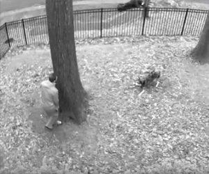 【動物】雨が降り寒くなってきたので庭で遊ぶ犬を飼い主が捕まえようとするが…