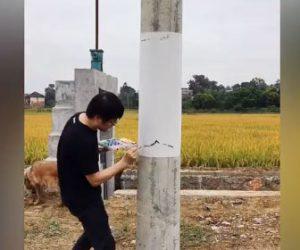 【神業】中国の芸術家が電柱に描いた絵が凄すぎる