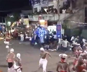 【動物】インドの結婚式で新郎が乗っている象が大暴れしてしまう衝撃映像