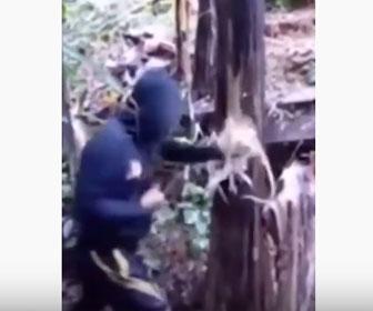 【衝撃】男性が木にパンチをしまくり殴り倒す衝撃映像
