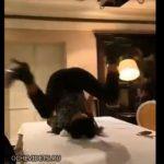 【衝撃】酔っ払った女性がテーブルの上で足を広げるがズボンが裂けてパンツが丸見えに…