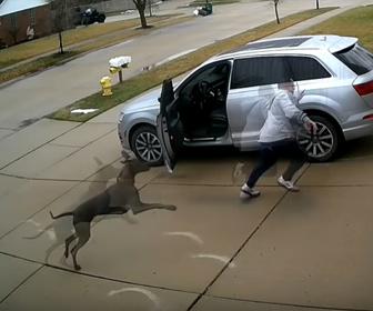 【動物】ゴミ出しをしている男性が隣人の犬に追いかけ回される衝撃映像