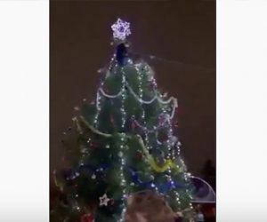 【動画】男が巨大なクリスマスツリーに登りオーナメントと一緒に落下する衝撃映像