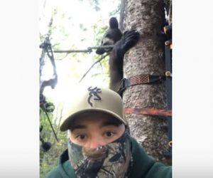 【動物】クマが猛スピードで木に登り、木の上にいた男性2人に…