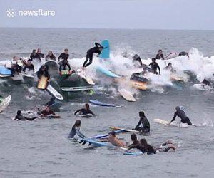 【衝撃】一本の波に大勢のサーファーが乗ろうとするが…