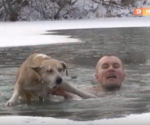 【衝撃】凍った池に落ちた犬を男性が必死に救出する衝撃映像