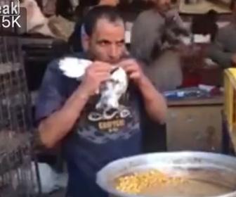 【衝撃】市場でハトを売る男性。ハトに餌を与える方法がヤバすぎる