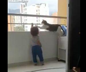 【動物】バルコニーの手すりを登ろうとする幼児をネコが必死に止める