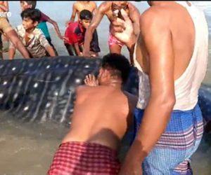 【動物】浅瀬で動けない巨大なジンベイザメをビーチにいた人達が協力して海に帰す