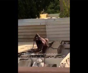 【衝撃】ハンマーで解体作業をする男性が床が崩れ落下してしまう衝撃映像