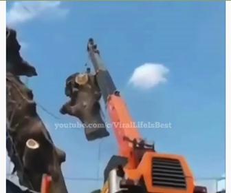【衝撃】木を持ち上げるクレーンが倒れてしまう衝撃映像