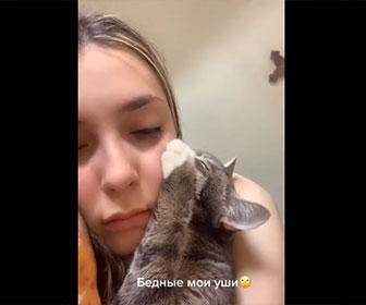 【動物】美少女の耳たぶが大好きなネコ
