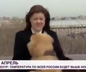 【衝撃】女性レポーターに犬が飛びかかりマイクを奪って逃走。女性レポーターが犬を追いかける