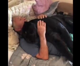 【動物】黒豹を抱いて寝るマジシャンが凄い