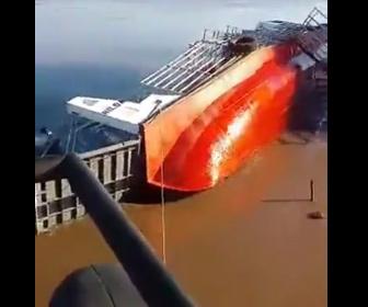 【事故】家畜運搬船が転覆。作業員や牛が川に放り出される衝撃映像
